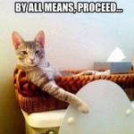 Funny Cat Memes: No Privacy with Bathroom Kitty