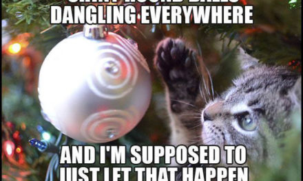 What's a Kitty to Do at Christmas?