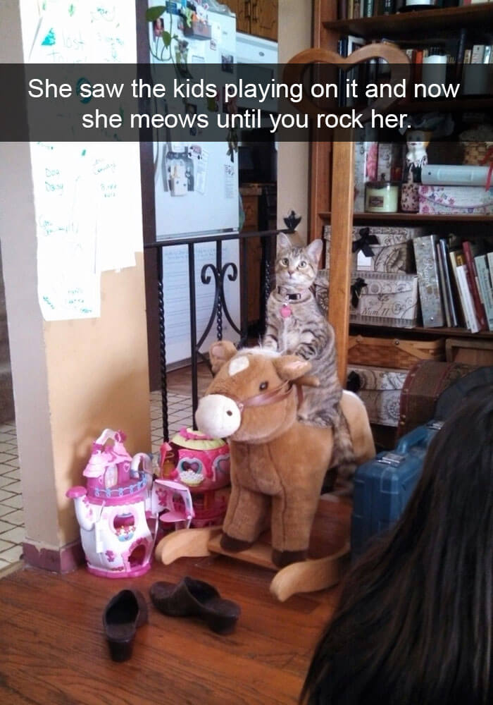 This kitty loves sitting on his rocking horse!
